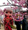 Doll_6551